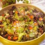salad_4-5-09-219x300