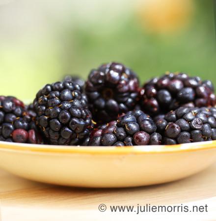blackberries_web